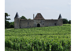 Bordeaux wines routes : in...